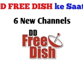 dd free dish new channels