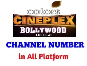 colors cineplex bollywood channel number
